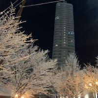 また、札幌へ
