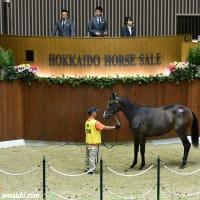 サマーセール出身馬【サブノタマヒメ(Sabuno Tamahime)】が「ノトキリシマ賞(3歳牝重賞)」を圧勝