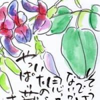 秋のお目覚め~(*^^)v