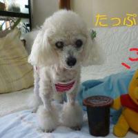 ファミリーマート たっぷり食べたい コーラ風味 そして台風17号 (-_-)ウーム