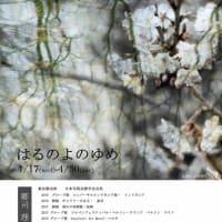写真展 はるのよのゆめ 郷司理恵 4/17-4/30