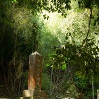 【Apr_07】豊岡藩京極家墓所