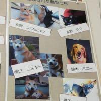 和歌山市動物愛護管理センター