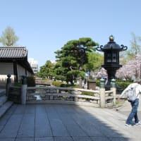#117 -'21. 渉成園から東本願寺へ