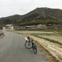 田舎道を自転車で会報配布