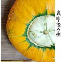 奥会津金山 赤かぼちゃ と 栃木県の 特産かぼちゃ