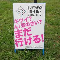 【一応】諏訪湖オンラインマラソンレポート①【やります】