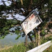 後川内ダムを散歩