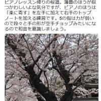平成最後の春へと。