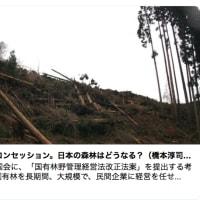 かれらはNHK党を使って大物のNHKを釣(つ)り上げようとしています。【NHKの民営化=NHKは一匹で大漁。】