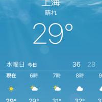朝からこの気温