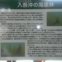 花咲く旅路プロジェクトのイメージ。