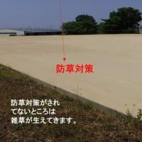 環境にやさしい防草