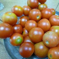 おばさんの料理教室No.3580 トマト/玉ねぎの 肉炒め