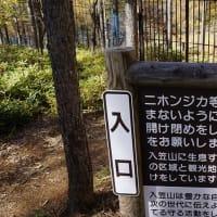 2015 長野・入笠山 02