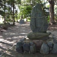 神社城陽0242 水主神社 樺井神社 城陽市の名木