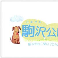 駒沢わんこ祭り2019【駒沢公園】