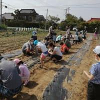 4日間終了!「田んぼと畑の耕育教室」