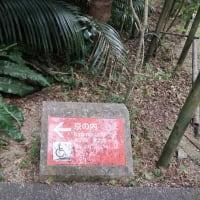 沖縄3日目~首里城公園へ