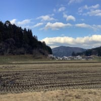 ◻︎12月発送◻︎特別栽培米◻︎
