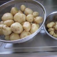 ジャガイモを収穫して・・・
