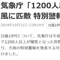 台風19号 がやってくる
