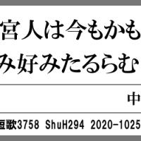 万葉短歌3758 さす竹の3495