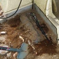漏水調査 調べた結果便器のトラブルでした