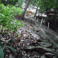 八重山神社の石段