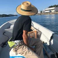 ダンナちゃまパパとメジカ釣り。