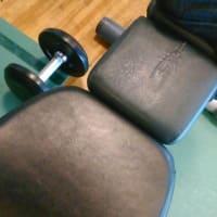 筋肉は嘘をつかない ・・・・!!!
