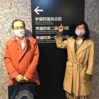 北海道大学松木教授に聴く「日本の騒音基準が1970年代のままのため、見過ごされる羽田空港など空港周辺の健康被害」