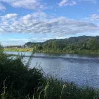 相性悪い魚野川