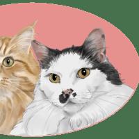 猫社長さん 猫専務さん(=^・^=)(=^・^=)です✨