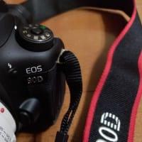 2019/10/20 Canon EOS 90D