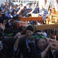 八重垣神社祇園祭 神輿連合渡御