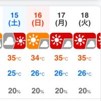 異常気象ですね。