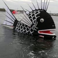3.始まりました大きな鯛の海中遊泳