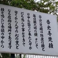 横浜まほろば近辺を散歩 その3