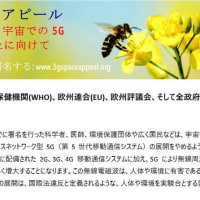 5G、重大な健康被害示す研究相次ぐ…世界で導入禁止の動き、日本では議論すら封印 浜田和幸