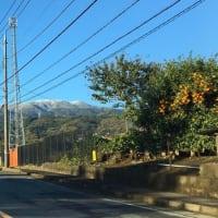 小田原から見た箱根の山々|箱根自然薯の森 山薬