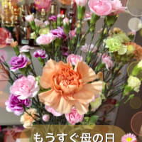 もうすぐ母の日「福岡市社交ダンス教室・レンタルスタジオならダンススクールライジングスター」