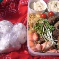2012年4月8日-お弁当シリーズ(ハンバーグとポテトサラダ)