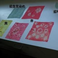 放課後学習 成器塾 自然素材を使って各種色の染め
