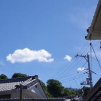 ある日の秋空の雲