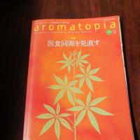 京都香り探訪 北山杉