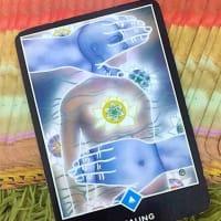 禅タロットをガチで〈具体的〉かつ〈現実的〉に活用する方法──例えばこんなカードでも。