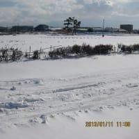 25.01.14 農園は雪の下