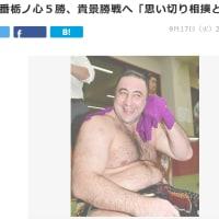 大相撲 今場所 雑感