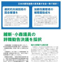 日本共産党草加市議団ニュース 2019年9月定例会号 さとう版